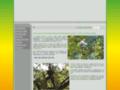 élagage des arbres Tarbes