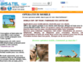 Devenez opérateur mobile en afrique
