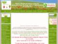 Fleur artificielle, plante verte et fleurie artificielle